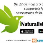 banner_iNaturalist
