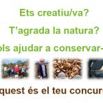 Concurs-video